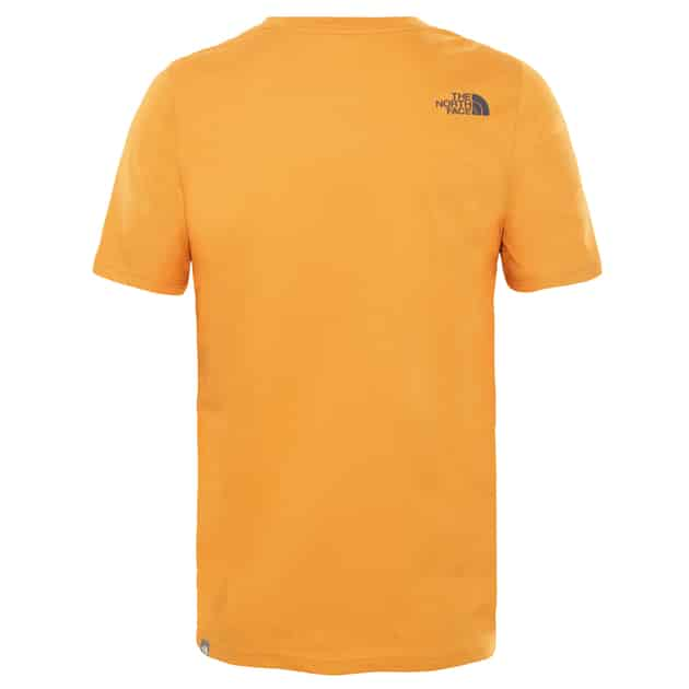 The North Face M S/S FLASH TEE bei Sport Schuster München